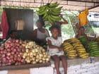 Fillette cubaine dans un marché