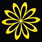 fleur numérique