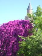 fleurs sur minaret