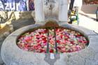 Fontaine aux oeillets