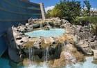 fontaine de l'aquarium