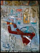 Fresque murale colorée