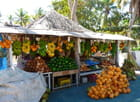 Fruits de Salalah