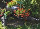 Gandouzier fleurie