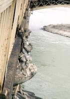 Gardien de pont