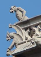 Gargouilles de Notre Dame