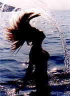 Gerbes de la mer Egée