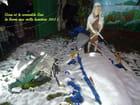 Gina et le crocodile Sac à la ferme aux mille lumières