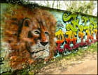 Graffiti de lion & lettrages à Meudon