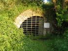 Grotte pour chauve souris
