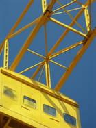 Grue titan jaune