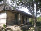 Habitation de la campagne cubaine