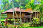 Hameau Ifugao