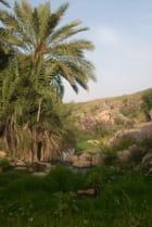 Hammam Debagh