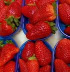 I cestini di fragole