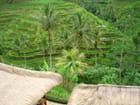 Ile de Bali