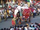 Inde fête de gangau
