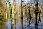 Inondations après Joaquim en Charente
