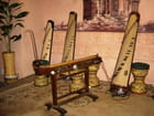 Instruments de musique vietnamiens