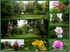 Jardin botanique d'Evreux (26/09/2017)