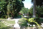 jardin botanique de La Havane