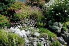 Jardin botanique du château-fort 1 -