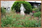 Jardin botanique du château-fort - 10