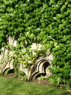 Jardin d'église