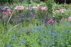 Jardin de Claude Monet à Giverny