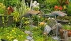 Jardin de Dyna