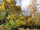 Jardin du luxembourg, automne 2006