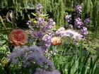 Jardin et Maison de Monnet à Giverny