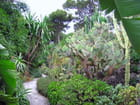 Jardin Exotique (13)