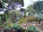 Jardin Exotique (15)