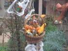 Jardin hallowen