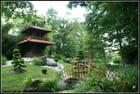 Jardin japonais...