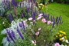 Jardin Public de Lisieux - 4