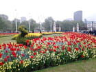 Jardin Westminster (2)
