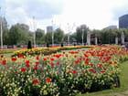 Jardin Westminster (3)