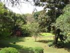 Jardinet exotique