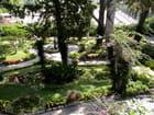 Jardins d'Auguste Capri
