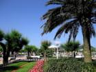 Jardins de l'hôtel de ville-San Sebastian (15)