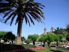 Jardins de l'hôtel de ville-San Sebastian (16)