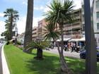 Jardins et parcs (2)