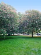 Kensington Gardens (5)
