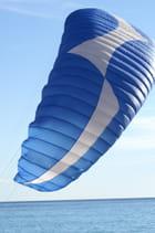 L'aile bleue