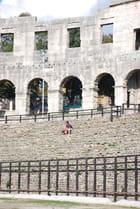 l'amphithéâtre de Pula