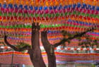 L'arbre à couleurs