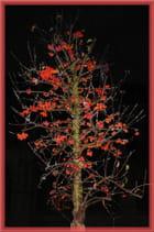 L'arbre aux petites baies rouges
