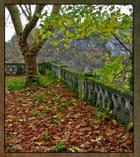 L'automne à nos portes...